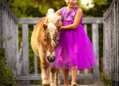 Shetland POny Girl