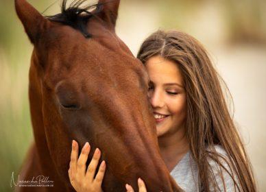 Close Up Pferd Porträt
