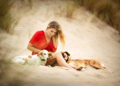 Strand Hunde