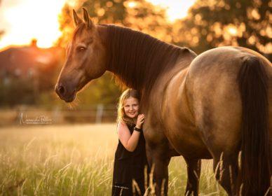 Little girl big horse