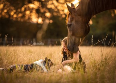 Horse little child dog